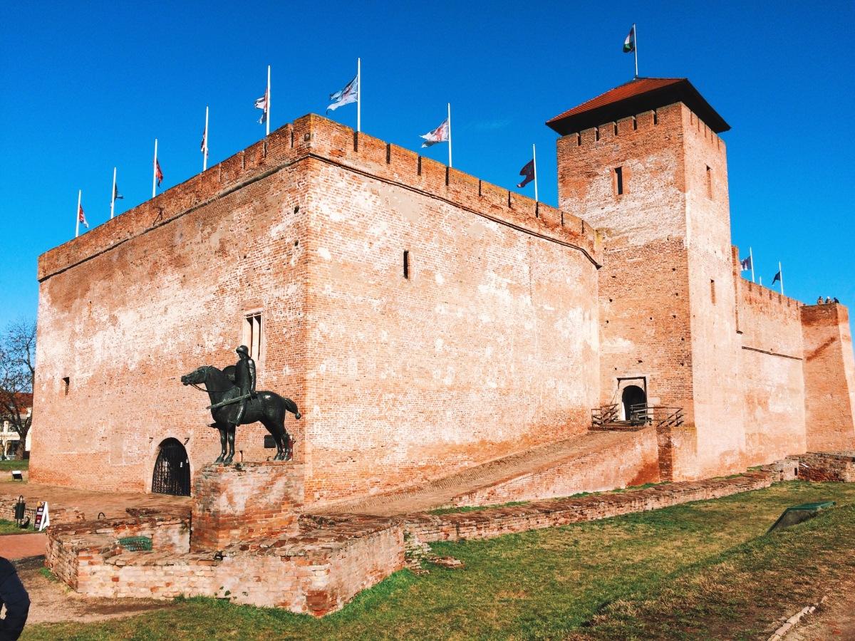 Castelul Gyula (Gyulai vár)
